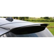 E87 SPOILER CARBONE TYPE2 BMW SERIE 1